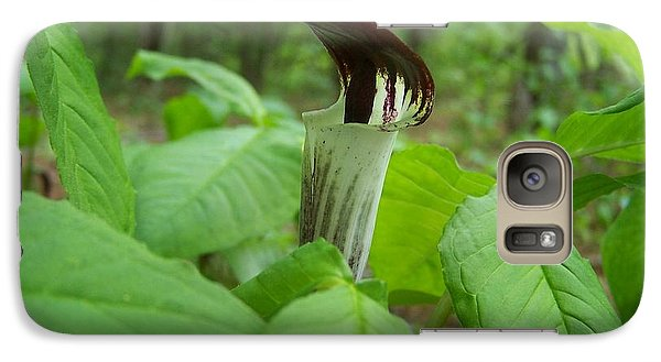 Galaxy Case featuring the photograph Jack In The Pulpit by William Tanneberger