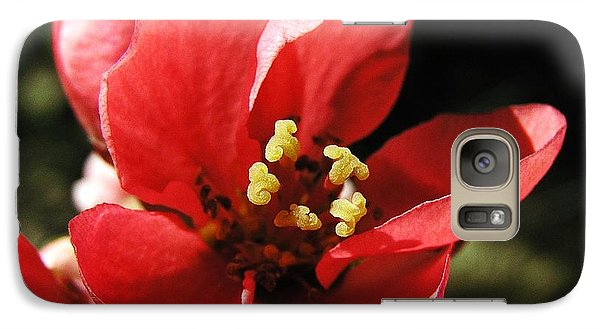 Galaxy Case featuring the photograph Japanese Apple Flower by Vesna Martinjak