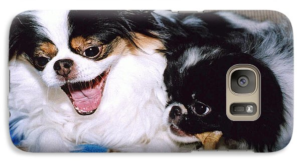Galaxy Case featuring the photograph Japanese Chin Dogs Hanging Out And Telling Stories by Jim Fitzpatrick