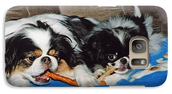 Galaxy Case featuring the photograph Japanese Chin Dogs Hanging Out by Jim Fitzpatrick