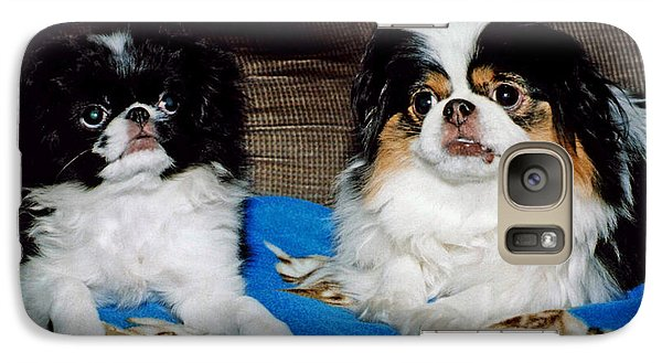 Galaxy Case featuring the photograph Japanese Chin Dogs Looking Guilty by Jim Fitzpatrick