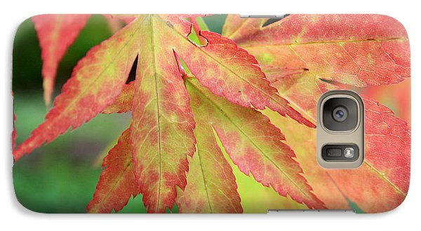 Galaxy Case featuring the photograph Japanese Maple by Gerry Bates