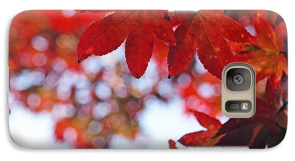 Galaxy Case featuring the photograph Japanese Maple In Fall by Brooke T Ryan