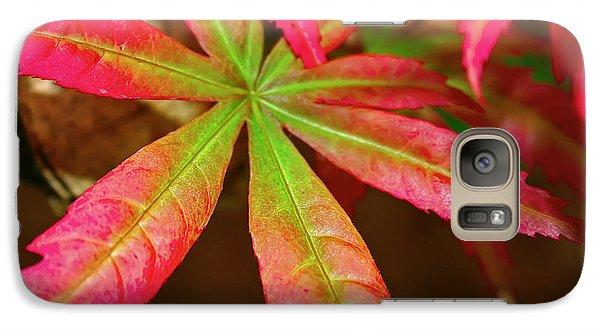 Galaxy Case featuring the photograph Japanese Maple by Kara  Stewart