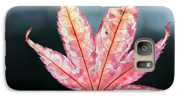 Galaxy Case featuring the photograph Japanese Maple Leaf - 1 by Kenny Glotfelty