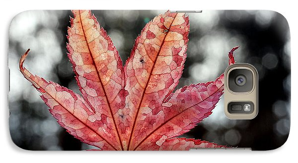 Galaxy Case featuring the photograph Japanese Maple Leaf - 2 by Kenny Glotfelty
