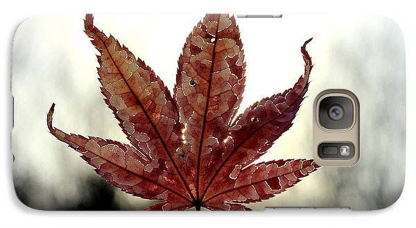 Galaxy Case featuring the photograph Japanese Maple Leaf - 3 by Kenny Glotfelty