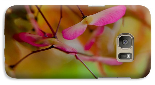 Galaxy Case featuring the photograph Japanese Maple Seedling by Brenda Jacobs