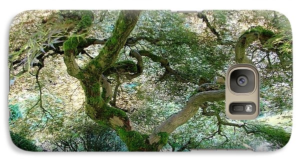 Galaxy Case featuring the photograph Japanese Maple Tree II by Athena Mckinzie