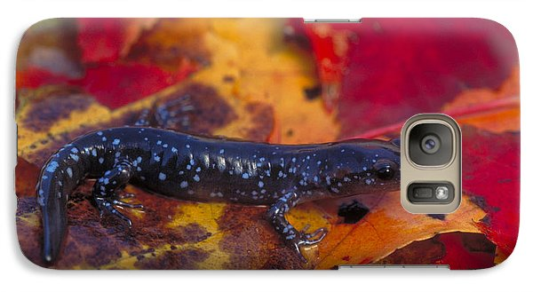 Jefferson Salamander Galaxy S7 Case