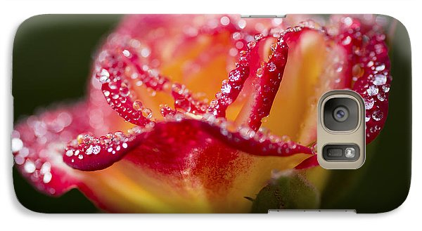 Galaxy Case featuring the photograph Jewels by Priya Ghose