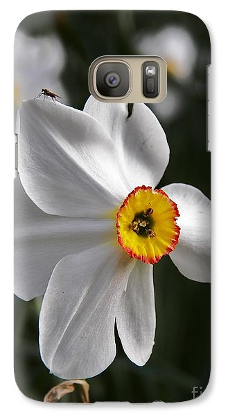 Galaxy Case featuring the photograph Jonquil by Judy Via-Wolff