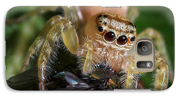 Jumping Spider 3 Galaxy S7 Case