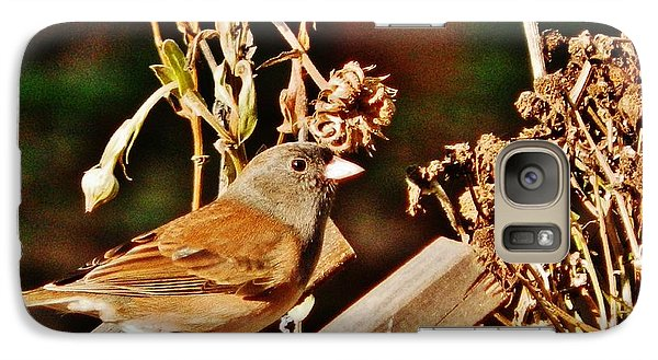 Galaxy Case featuring the photograph Junco Jaunt 2 by VLee Watson