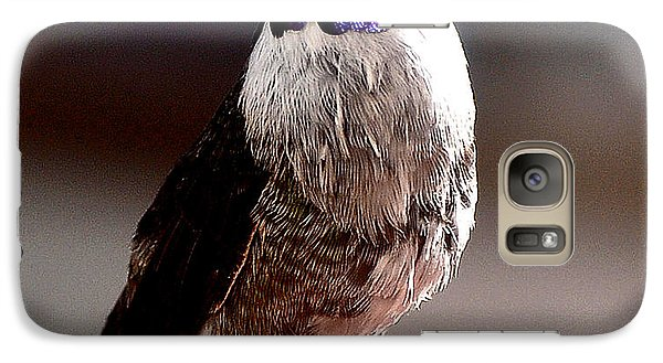 Galaxy Case featuring the photograph Juvenile Male Anna On Perch by Jay Milo