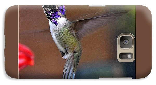 Galaxy Case featuring the photograph Juvenile Male Costa by Jay Milo