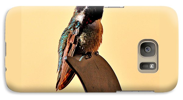 Galaxy Case featuring the photograph Juvenile Rufus Hummingbird Sitting It Out by Jay Milo