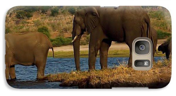 Galaxy Case featuring the photograph Kalahari Elephants Preparing To Cross Chobe River by Amanda Stadther