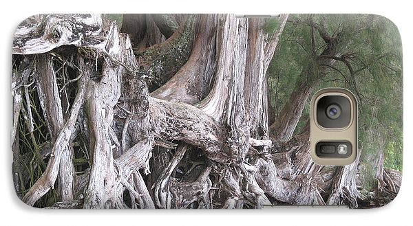 Galaxy Case featuring the photograph Kauai - Roots by HEVi FineArt