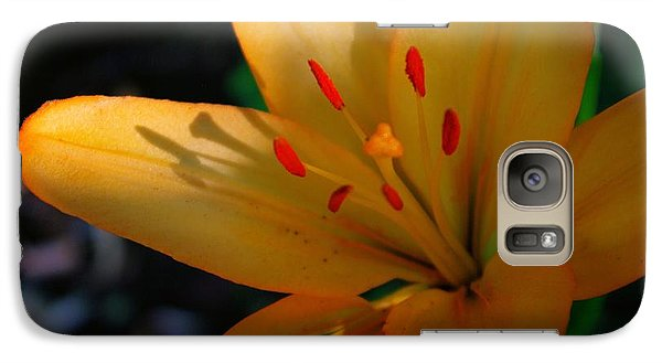 Galaxy Case featuring the photograph Kenilworth Garden One by John S