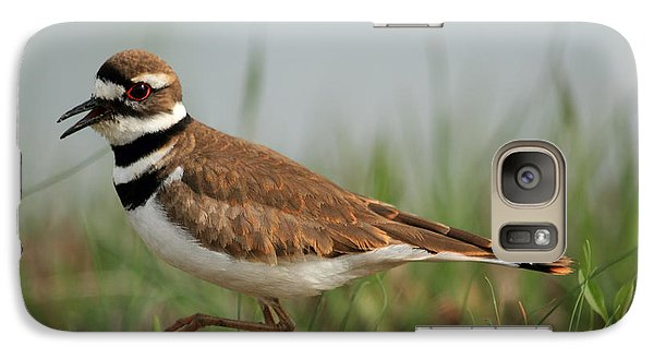 Galaxy Case featuring the photograph Killdeer by Geraldine DeBoer