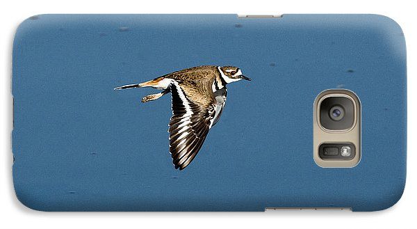 Killdeer In Flight Galaxy S7 Case by Anthony Mercieca