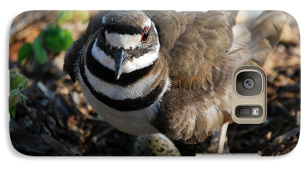 Killdeer Mom Galaxy S7 Case by Skip Willits