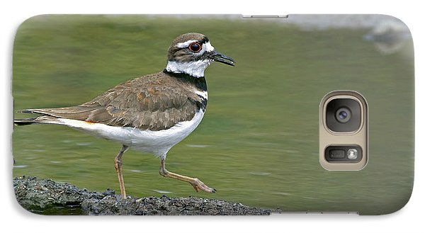 Killdeer Walking Galaxy S7 Case by Sharon Talson