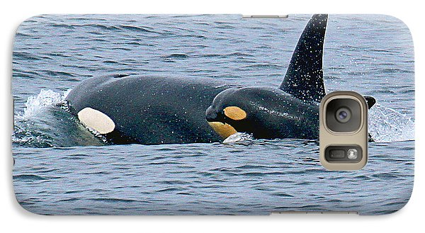 Galaxy Case featuring the photograph Killer Whale Mother And New Born Calf Orcas In Monterey Bay 2013 by California Views Mr Pat Hathaway Archives