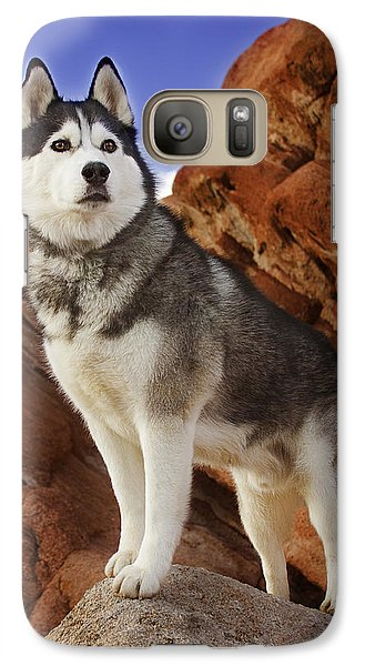 Galaxy Case featuring the photograph King Of The Huskies by Brian Cross