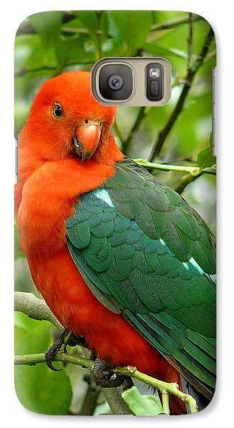 Galaxy Case featuring the photograph King Parrot Male by Margaret Stockdale