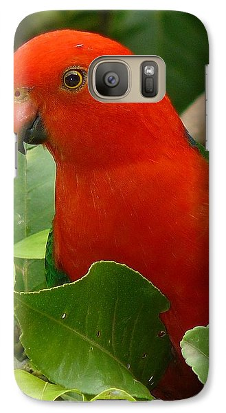 Galaxy Case featuring the photograph King Parrot Portrait by Margaret Stockdale