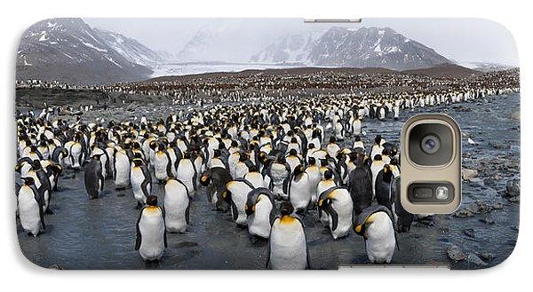 King Penguins Aptenodytes Patagonicus Galaxy S7 Case