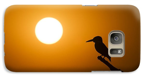 Kingfisher Sunset Galaxy Case by Tim Gainey