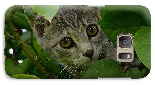 Kitten In The Bushes Galaxy S7 Case