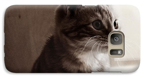 Galaxy Case featuring the photograph Kitten In The Light by Melanie Lankford Photography
