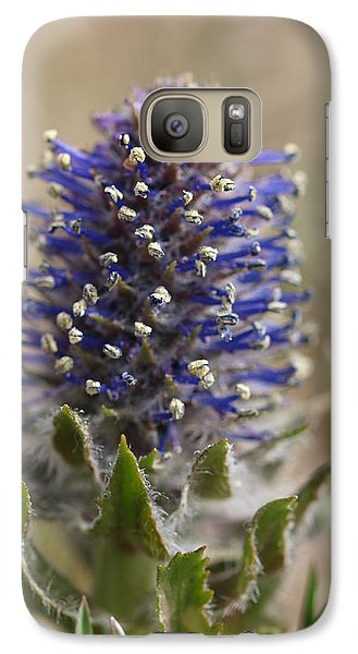 Galaxy Case featuring the photograph Kittentail by Jenessa Rahn