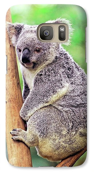 Koala In A Tree Galaxy S7 Case