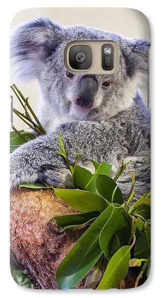 Koala On Top Of A Tree Galaxy S7 Case by Chris Flees