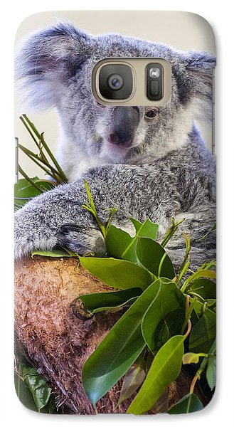 Koala On Top Of A Tree Galaxy S7 Case