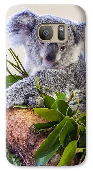 Koala On Top Of A Tree Galaxy S7 Case