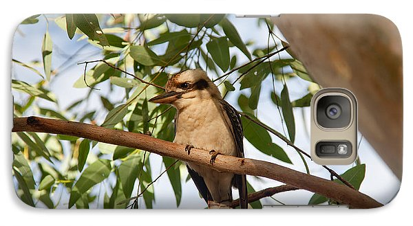 Galaxy Case featuring the photograph Kookaburra 3 by Carole Hinding