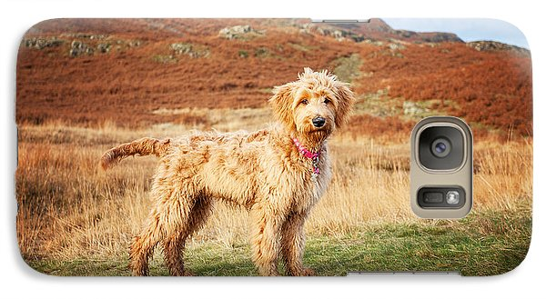 Galaxy Case featuring the digital art Labradoodle Puppy by Mike Taylor