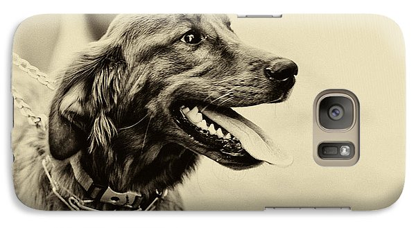Galaxy Case featuring the photograph Labrador Retriever by Jerome Lynch