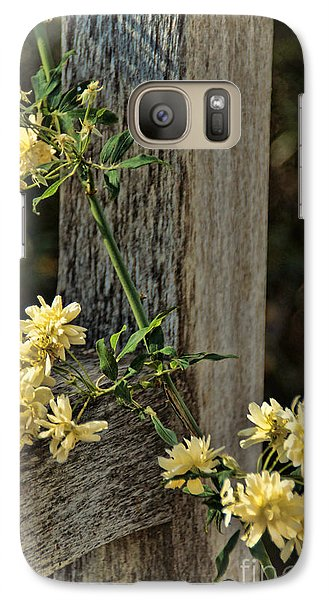Lady Banks Rose Galaxy S7 Case by Peggy Hughes