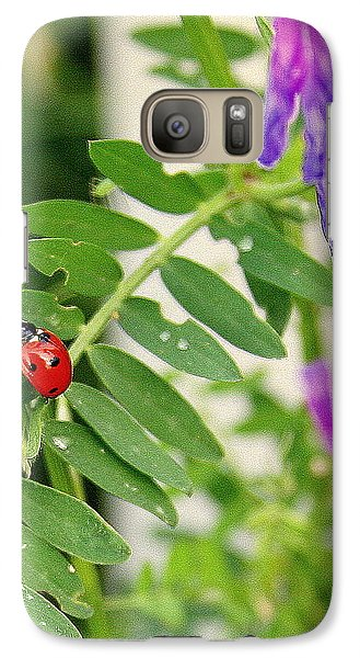Galaxy Case featuring the photograph Lady Bug Among The Wild Flowers by Paula Tohline Calhoun