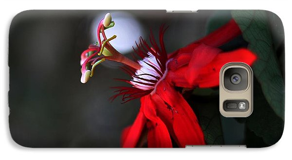 Galaxy Case featuring the photograph Lady Margaret - Passionflower  by Ramabhadran Thirupattur