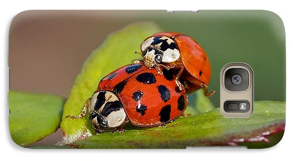Ladybird Coupling Galaxy Case by Rona Black