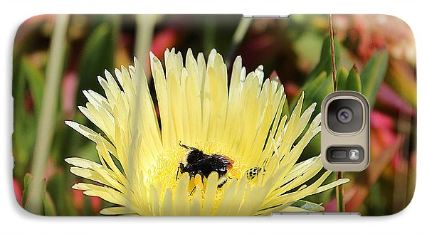 Galaxy Case featuring the photograph Ladybug And A Bumblebee by Kevin Ashley