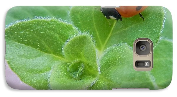Galaxy Case featuring the photograph Ladybug And Oregano by Robert ONeil